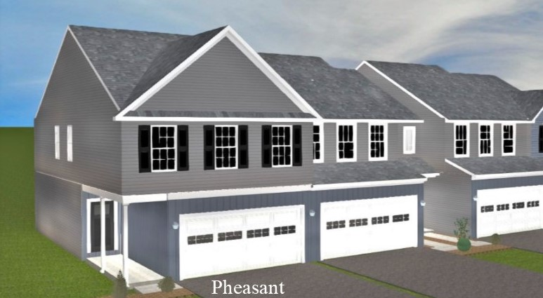 The Pheasant with finished basement